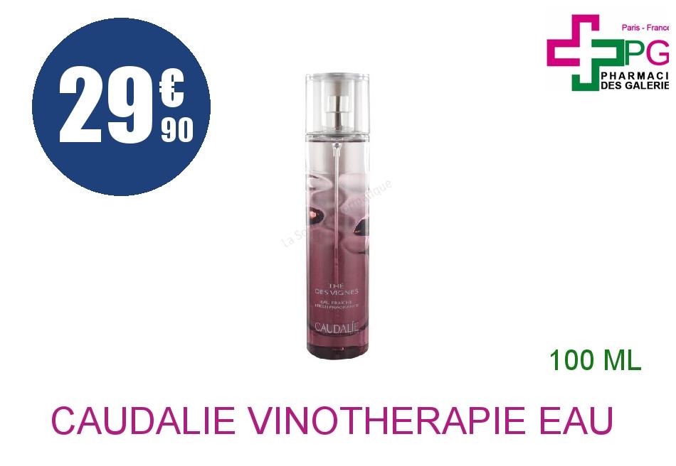 Achetez CAUDALIE VINOTHERAPIE Eau fraîche thé des vignes Vaporisateur de 100ml